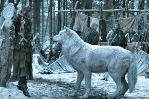 game-of-thrones-what-happened-to-ghost.jpg